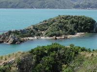 Mokopuna Ilha