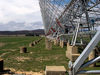 Molonglo Observatory Synthesis Telescope