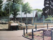 Monkey Enclosure At City Park