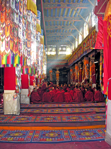 Monks In The Great Assembly Hall At Drepung Monastery