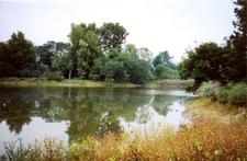 Morton Arboretum Lake