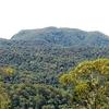 Mount Banda Banda