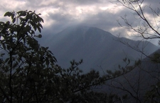 Mount Le Conte From The Trailhead