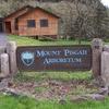 Monte Pisga Arboretum