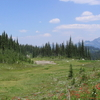 Meadow Near The Summit