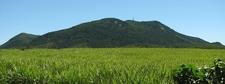 Mount Blackwood