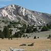 Mt. Moriah In Mt. Moriah Wilderness