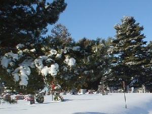 Cementerio Mount Olivet