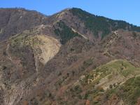Monte Shindainichi