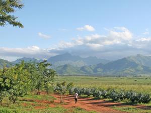 Uluguru Montañas