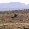 Monte Zeil