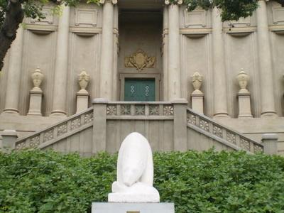 Museo  Caraffa And Polar Bear