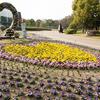 Nagai Botanical Garden - View