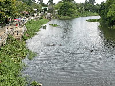 Nakhon Nayok River Rafting