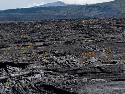 Napau Crater Trail