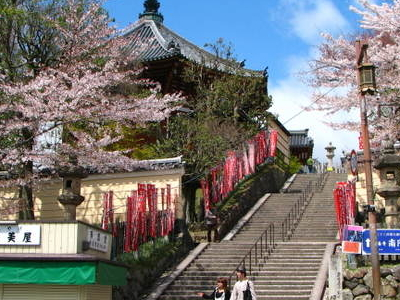 Entrances To Kofukuji Temple