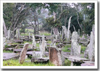Nartiang Monoliths Jaintia Hills District