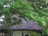 National  Cultural  Centre  2 C  Vanuatu