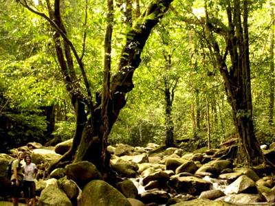 National Parks - Gunung Gading National Park