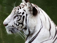 National Zoological Park