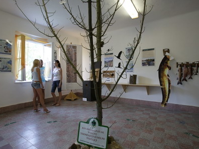 Nature Preserving Exhibition Room, Dombóvár