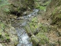 Nature Reserve Krępak