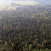 Reserva Natural Miodne