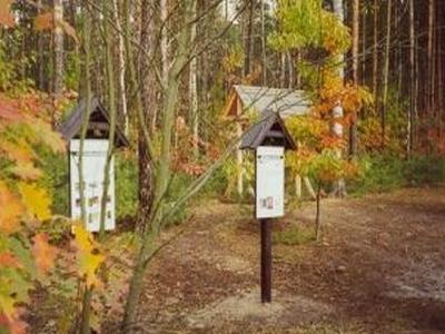 Nature Trial Poland