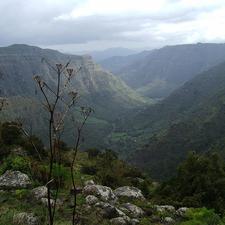 Semien Mountain Trekking Photos