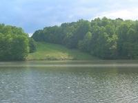 Lago Needwood