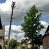 Nemencine Old City Streets