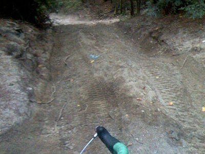Nepaug State Forest