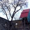 Nes Church Ruins