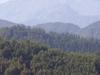 Nevados Del Longavi