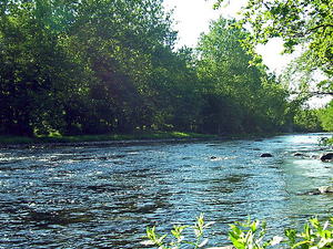 Neversink Río