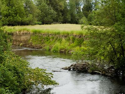 Newaukum River