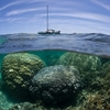 Nueva Caledonia Barrera de Coral