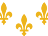 New  Orleans Louisiana Flag