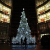New York City Holiday Lights Tour