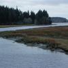Niawiakum River