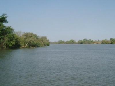 Niumi National Park Gambia