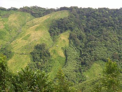 Nokrek Biodiversity Area