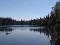 Nolte Parque Estadual