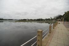Nong Nari Arboretum