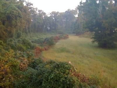 Noonday Creek