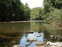 North Branch Patapsco River