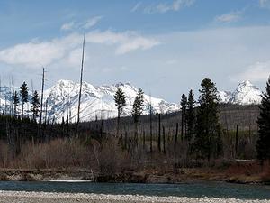 Tenedor del Norte del río Flathead