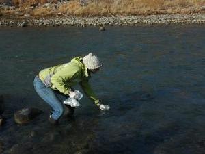 Norte Tenedor río Gunnison