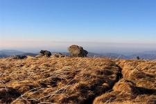 North From Grassy Ridge Bald - Roan Highlands NC