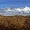 North Island Volcanic Plateau